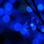 La technologie LED, le futur de l'éclairage domestique